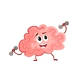Funny concentration brain training with dumbbells vector image