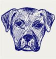 Portrait puppy vector image