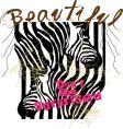 zebra design vector image vector image
