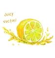 drawing slice of lemon vector image