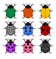 color ladybug set on white background vector image