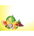fruits horizontal background vector image