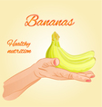 Bananas in the palm of healthy nutrition vector image
