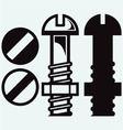 Set of screws vector image vector image