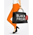 woman holding shopping bag vector image