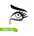 Eye icon 15 vector image