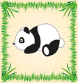 panda drawing vector image