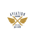 aviation pilot legend icon of airplane vector image vector image