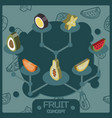 fruit color isometric concept icons vector image