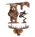 Hunting trophies bear deer and other animals vector image