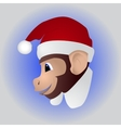 New year a cute monkey vector image