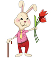 rabbit with flowers and cane vector image