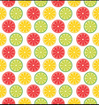 lemons and limes vector image
