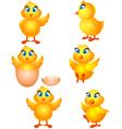 little group chicken cartoon vector image