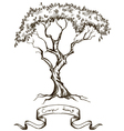 old tree with ribbon banner hand drawn vector image
