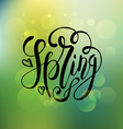 Spring lettering typography vector image