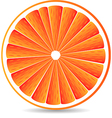 orange segment isolated on a white vector image