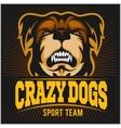 Modern professional logo for sport team Bulldog vector image
