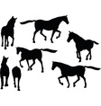 horse silhouette in loping pose vector image