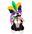 Mardi Gras Boston Terrier vector image