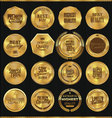 Premium quality golden labels collection vector image