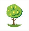 Cartoon pear tree vector image