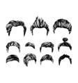 hair styles set vector image