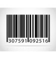 barcode 01 vector image vector image