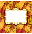 Frame labels on background with autumn leaves vector image