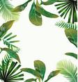 tropical leaf pattern poster vector image