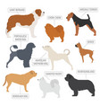 working watching dog breeds collection isolated vector image