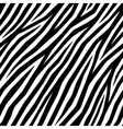 Smooth Zebra Print vector image