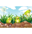 Three frogs above the rocks vector image