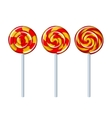 Delicious colorful lollipop collection vector image