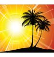 Sunset on the beach vector image