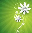 floral flower vector image