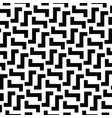 irregular maze lines black and white vector image