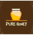 pure honey isolated jar vector image