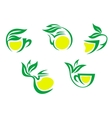 Tea cups symbols with lemon and green leaves vector image vector image