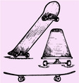 skateboard deck vector image