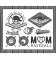 Baseball labels and badges vector image
