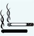 Cigarette burns vector image