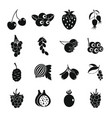 Berries icons set simple style vector image