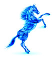 Fair Horse on hind legs W 01 vector image