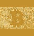 digital bitcoin gold crypto currency vector image
