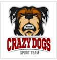 Modern professional logo for sport team Bulldog vector image