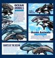 whale and shark ocean animal banners vector image