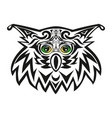 The head of an owl a night bird of prey a vector image