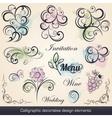 calligraphic decorative design elements vector image