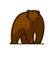 Walking grizzly bear vector image